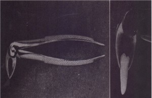A, Side view of English style of forceps. B, Forceps adapted to lower premolar.