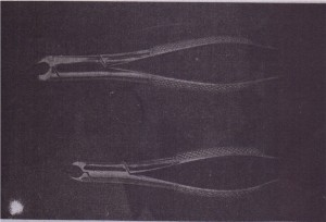 No. 151S (bottom) is the smaller version of no.•151 (top) and is used to extract primary teeth.