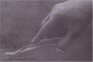 Suture scissors should be held in same fashion as needle holder.