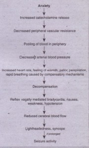 FIG. 2-9 Pathophysiology and manifestations of vasovagal syncope.