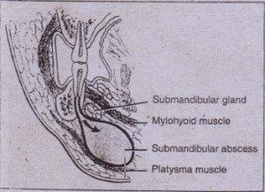 FIG  16-9