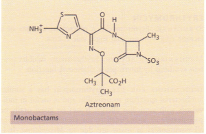 The structure of monobactams.