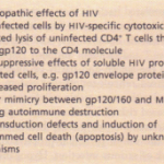 ANTIBODY DEFICIENCIES