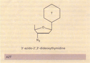 The structure of AZT.