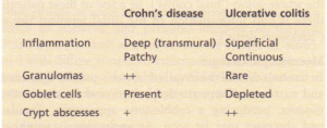 Histological differences between Crohn's disease and ulcerative colitis.