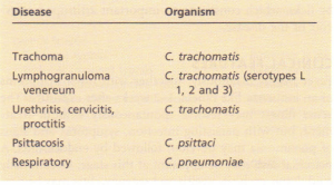 Chlamydia infections.