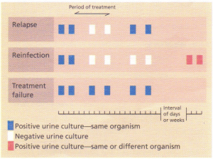 A comparison of reinfection, relapse and treatment failure in urinary tract infection,