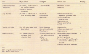 Types and clinical uses of diuretics.