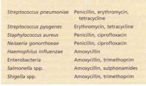 Some bacteria that have recently developed resistance to common antibiotics.