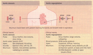 Auscultatory features of aortic