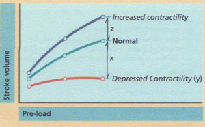 Ventricular function (Starling curve).
