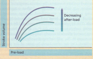 The effect of changes in after-load