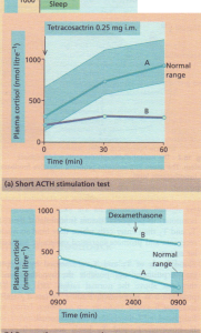 a) Short ACTH stimulation test showing a normal response