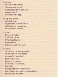 Major pathogens in HIV infection.