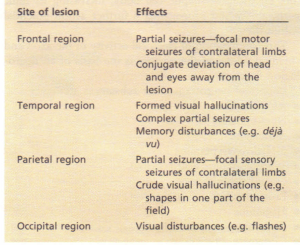 Effects of an irritative lesion of the cortex.